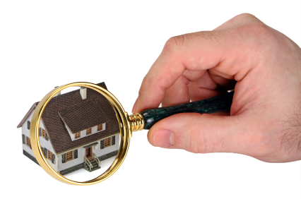 home inspection magnified.jpg